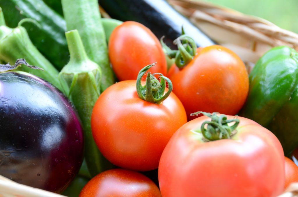 オーガニック食品の中でも人気が高いのが野菜です。