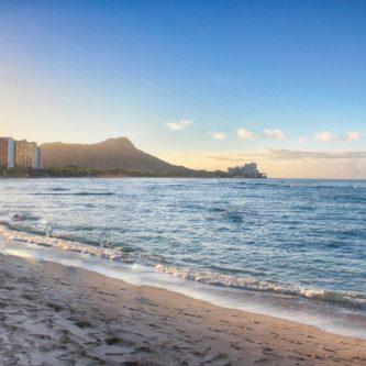 今回はハワイのソウルフードと呼ばれる、ポイについて詳しくご紹介します!