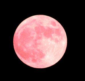 月と女性の身体のリズムについての内容をご紹介します。