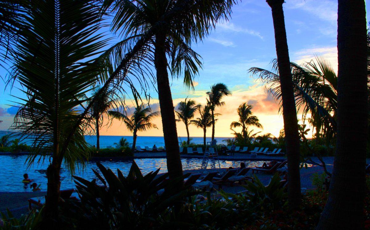 ハワイのソウルフード、ポイについてご紹介します。今回はポイの作り方とレシピをご紹介します。