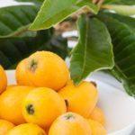 びわの葉を使った健康法について、詳しくご紹介します。