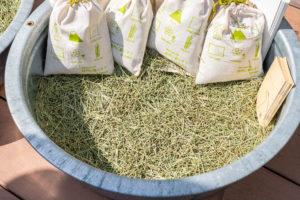 畳ヨガさんの井草の良い香り、懐かしいに匂いが当たり一面に広がっていました。