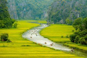 CAFEKO(カフェコ)は焼酎のルーツ、ベトナム生まれのお酒です。