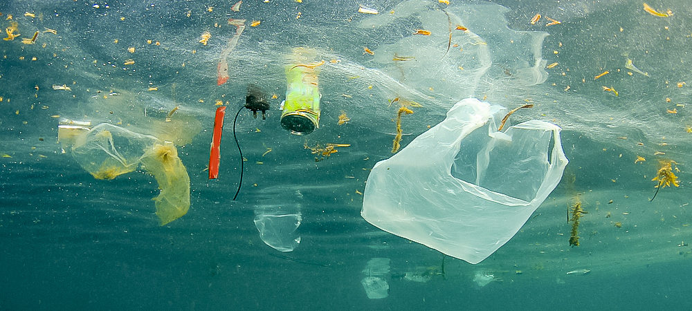 プラスチックで汚染された海