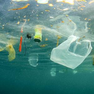 プラスチックに囲まれた生活を見直す