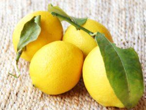 夏におすすめの、レモンのエッセンシャルオイルの使い方をご紹介します。