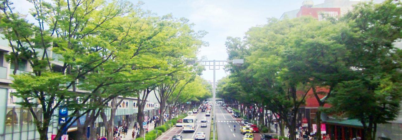 東京の表参道や青山では、オーガニックカフェはファーマーズマーケットでさまざまなオーガニック情報を得られることができます。