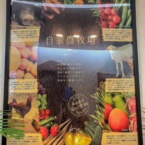 沖縄のオーガニックにこだわったリゾートホテル・テラスガーデン美浜リゾート