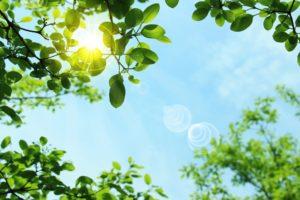 夏の日焼け対策、シミ予防、紫外線対策の方法について詳しくご紹介します。