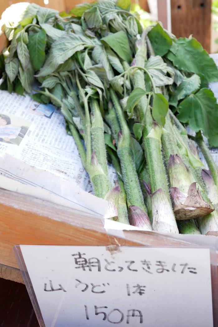 ビオまるしぇに並んでいる野菜は十勝産の農薬・化学肥料不使用。朝採りの山うどが並んでいました。