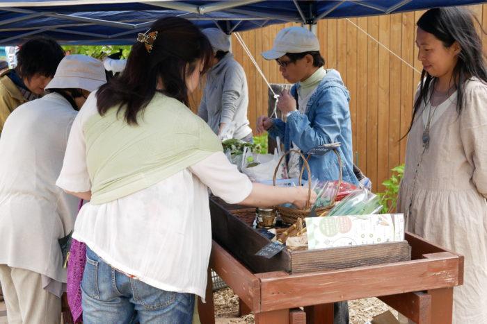 ビオまるしぇ当日の様子です。ここにある野菜はすべて十勝産で、農薬・化学肥料不使用なんです。