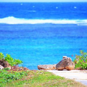 伝統と文化を知るツアー・マイレ・プログラム in ハワイ島③