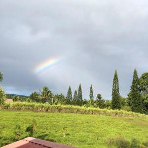 オフグリッドな宿!ハワイ島MAKOA(マコア)でロハスな生活を体験してみよう!②