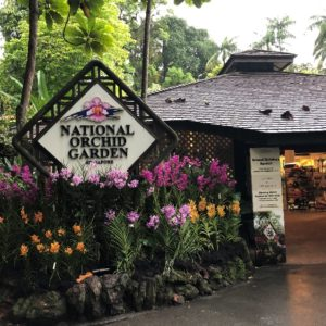 植物のパワーを感じる!世界遺産シンガポール植物園の散策レポート!