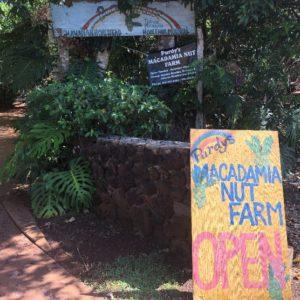モロカイ島でマカダミアナッツを自然栽培する農園を訪ねてみました