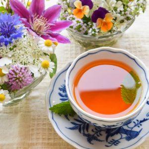 紅茶や緑茶だけじゃない!お茶の全6種類をお茶マニアが解説!